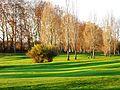 Marsac-sur-l'Isle golf (11).JPG