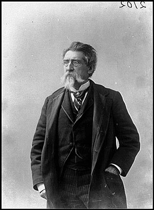 Mathew Brady - Photograph of Brady, c. 1889