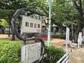 Matsudo wada koen.jpg