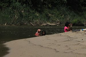 Batek people - Batek people bathing in the Tembeling River, Pahang, Malaysia.