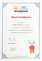 Merit Certificate.png