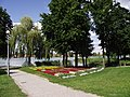 Międzychód - park nad j. Kuchennym - panoramio.jpg