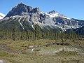 Michael Peak at Emerald Lake - Banff National Park.jpg