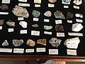 Mineralogy Display.JPG