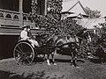 Miss Meighen and her escort (George Stephen House).jpg