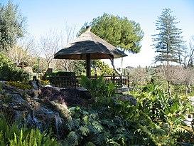 Jardin Botanico Molino De Inca Wikipedia La Enciclopedia Libre