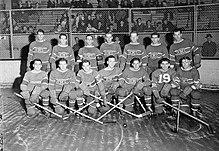Ligue nationale de hockey — Wikipédia