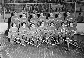 Two rows of seven hockey players pose while on the ice. A small group of fans observe in the background.