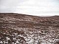 Moorland, Carn Mhic an Toisich - geograph.org.uk - 674520.jpg