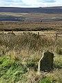 Moorland milestone (2) - geograph.org.uk - 1518800.jpg