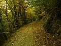 Morcote, Switzerland - panoramio (9).jpg