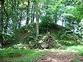 Motte behind The Nursery, Gunnerton - geograph.org.uk - 848551.jpg