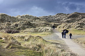 Murlough National Nature Reserve (17), February 2010.JPG