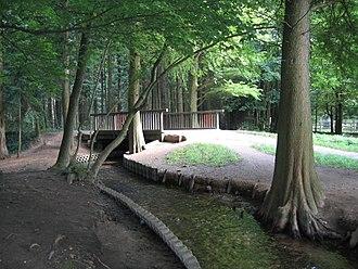 Der Mutzbach im Dünnwalder Wald