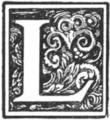 Muusmann-Matadora-L.png