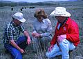 NRCSOK02029 - Oklahoma (5667)(NRCS Photo Gallery).jpg