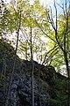 NSG Steinbruch Holzmühle (28).jpg