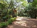 Nairobi Arboretum Park 09.JPG