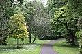 National Botanic Garden,Dublin,Ireland - panoramio (20).jpg