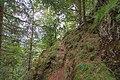 Naturschutzgebiet Feldberg (Black Forest) - Alpiner Steig am Feldberg - Bild 06.jpg