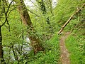 Neckarweg in Rottweil - panoramio (2).jpg