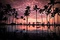 Negombo Beach resort pool (Unsplash).jpg