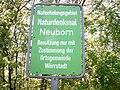 Neuborn 1.jpg
