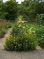 Neuer Botanischer Garten - Systematische Abteilung 002.jpg