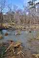 Neuse River Greenway - panoramio (7).jpg
