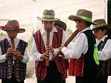 Bolivia-Kultur-Fil:Niños ejecutando una tarkeada