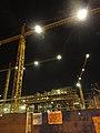 Night Cranes.jpg