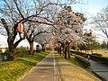 Nishiashihara, Tateyama, Nakaniikawa District, Toyama Prefecture 930-0224, Japan - panoramio (2).jpg