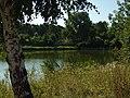 Nové Strašecí, rybník.JPG