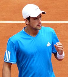 Novak Đoković at the 2009 French Open 2.jpg