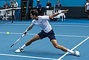 Novak Đoković: Alter & Geburtstag