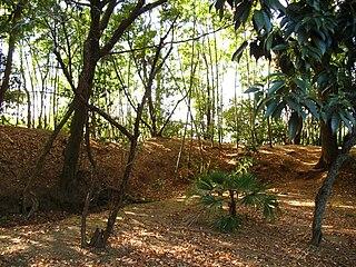 Nirengi Castle