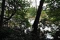 Ohiopyle State Park River Trail - panoramio (100).jpg