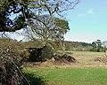 Old Barns and Fields near Munslow, Shropshire - geograph.org.uk - 675462.jpg
