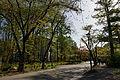 Omachi onsen-kyo10s3.jpg