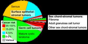 cancer ovarian neoplasm