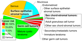 ovarian cancer epithelial types)