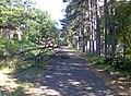Pécsi Vidámpark - panoramio (2).jpg