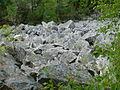 Přírodní rezervace Čertova stěna 1 (2).jpg