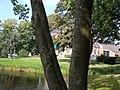 Park Leeuwenhorst Blijham 3.jpg