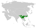 Parus spilonotus distribution map.png