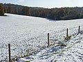 Pastures in snow, Lewknor - geograph.org.uk - 1034154.jpg
