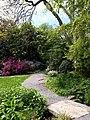 Path, Coleton Fishacre - geograph.org.uk - 817317.jpg
