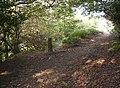 Path junction, Shibden Dale, Northowram - geograph.org.uk - 589550.jpg