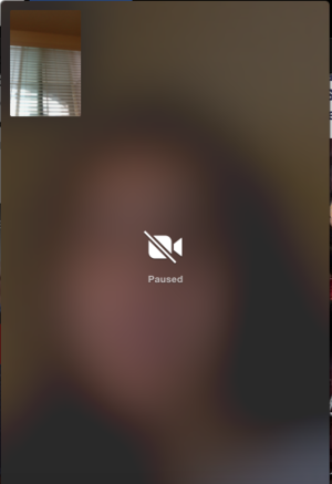 FaceTime - Image: Paused Face Time