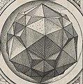 Perspectiva Corporum Regularium 15d.jpg